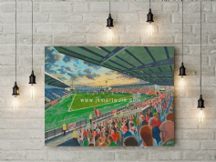 excelsior stadium canvas a2 size (3)